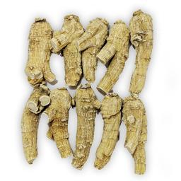 Click here to learn more about the Half Short Long Colossal 5 Year Old Wisconsin Ginseng Root.